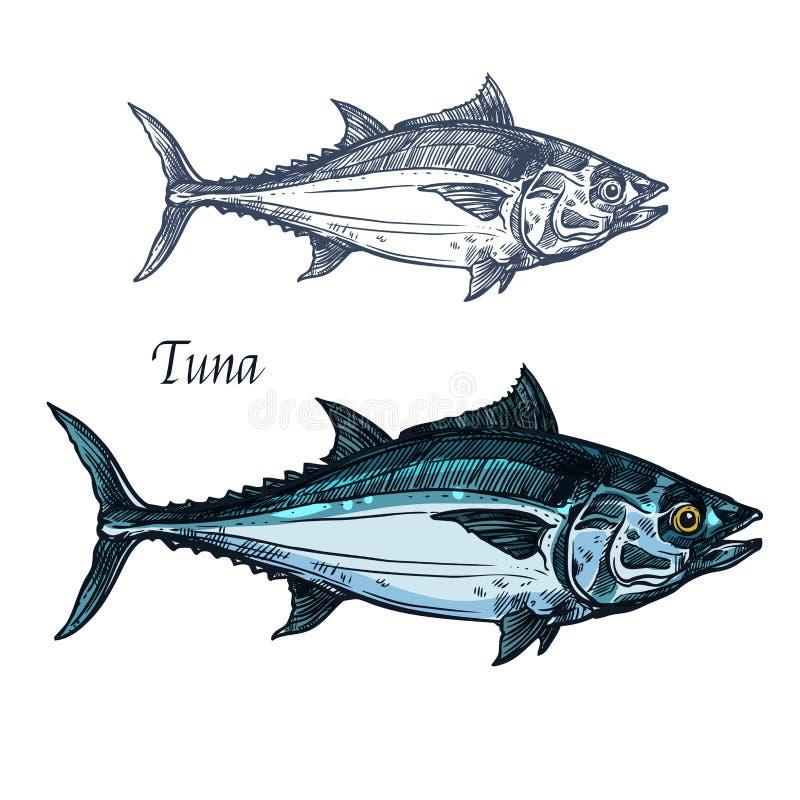 金枪鱼传染媒介被隔绝的剪影象 向量例证
