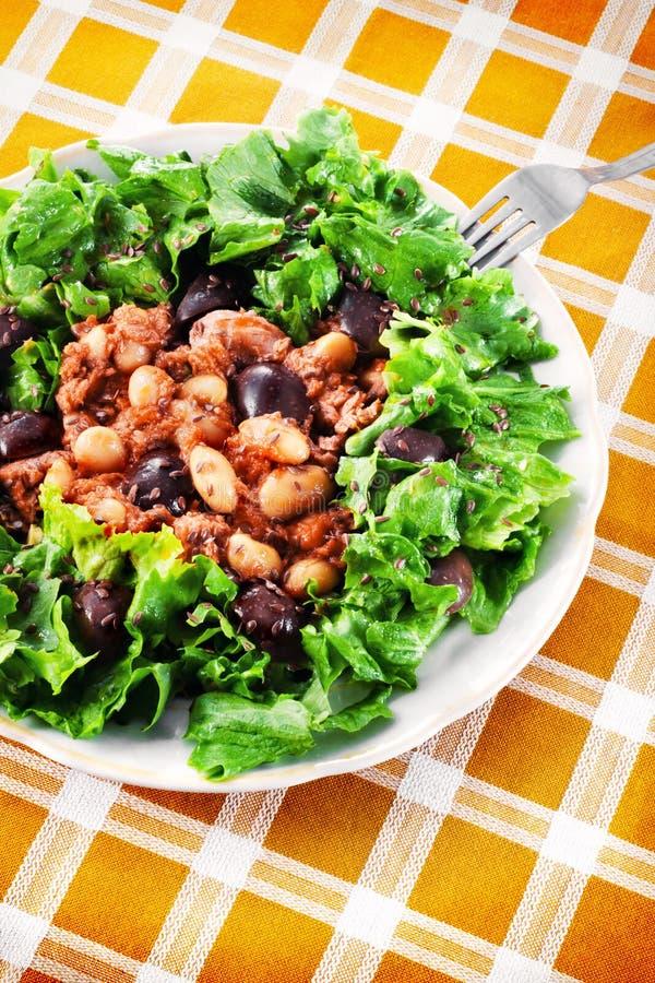金枪鱼色拉用豆和黑橄榄 库存照片