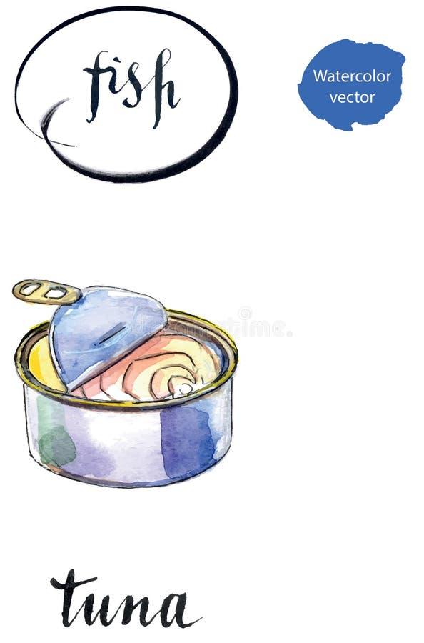 金枪鱼被打开的蜜饯  库存例证