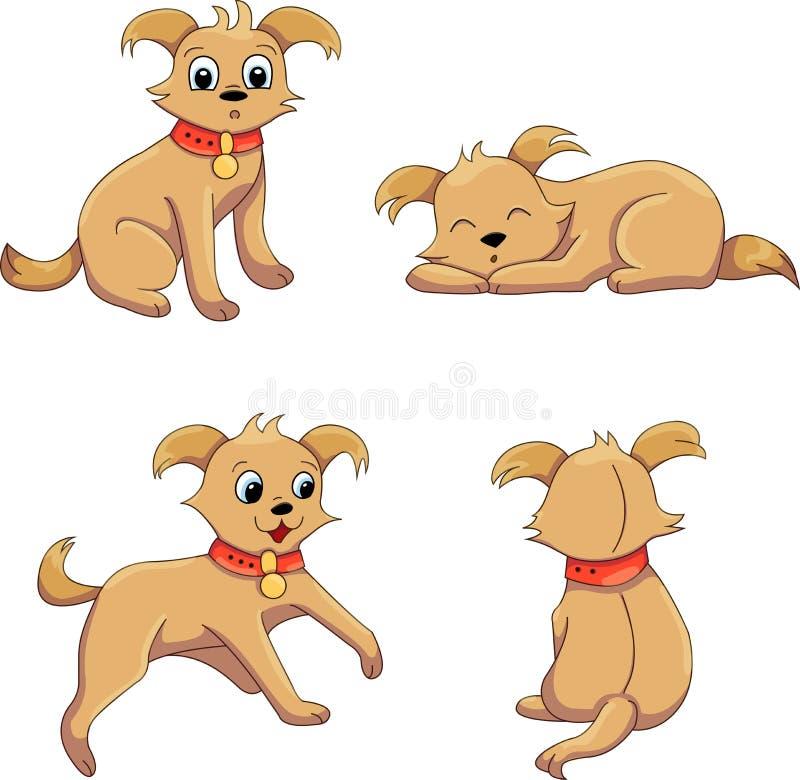 金毛猎犬位置 免版税库存照片