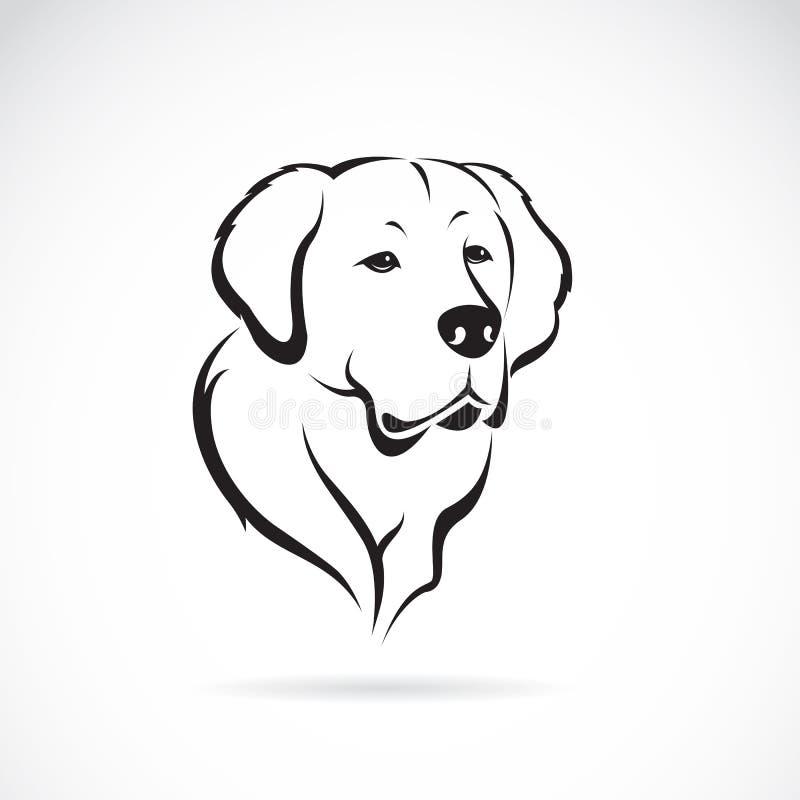 金毛猎犬的传染媒介图象 皇族释放例证