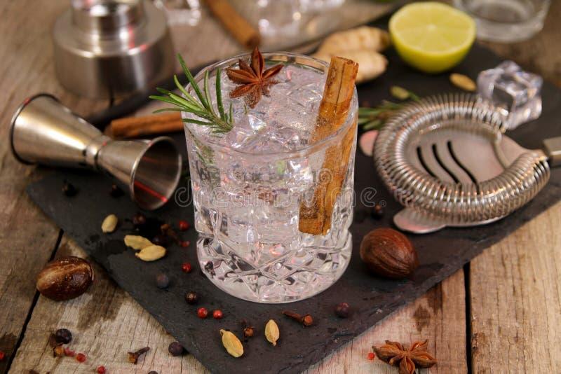 金汤尼鸡尾酒用迷迭香八角和桂香 库存图片