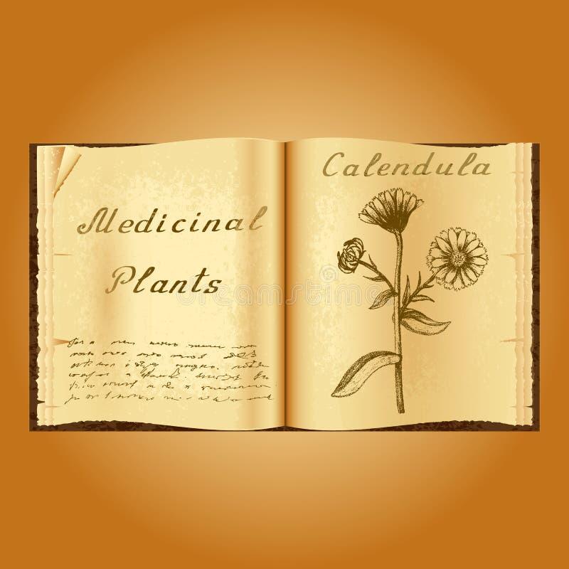 金盏草 植物的例证 医疗工厂 书中医师老开放书 库存例证
