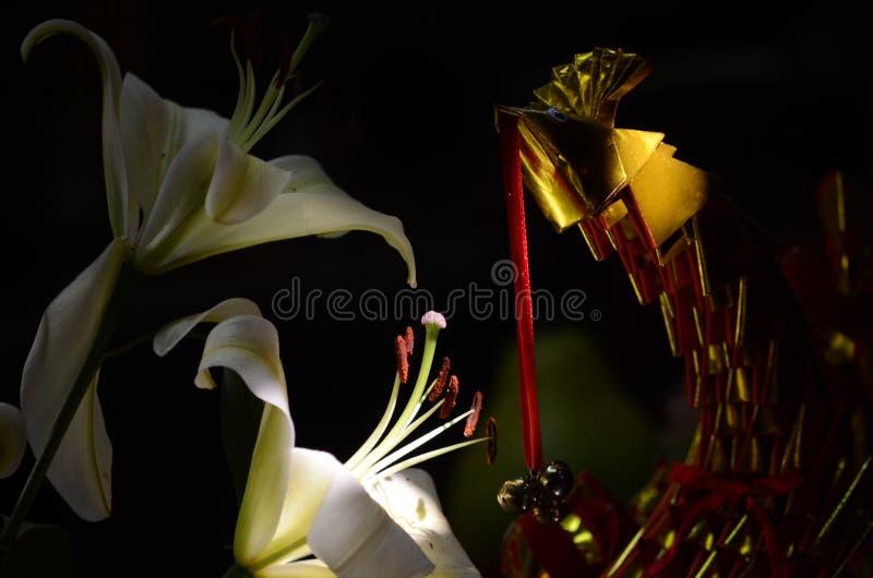 金纸孔雀和lillies 免版税库存照片