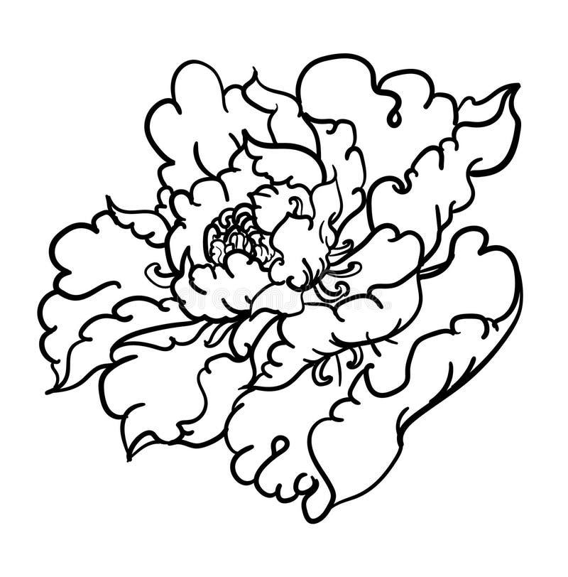 金色淋浴树载体,泰国花画,热带瘘管……牡丹花轮廓及其纹身分离。 皇族释放例证