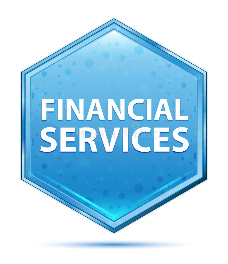 金融服务水晶蓝色六角形按钮 向量例证
