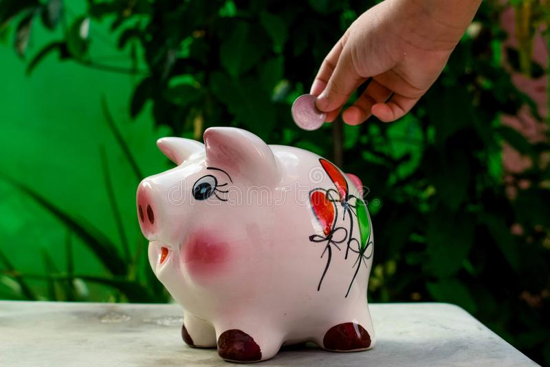 金钱是什么做一切增长 免版税图库摄影