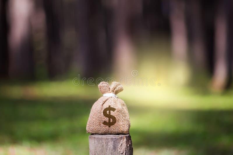 金钱粗麻布袋子 库存照片