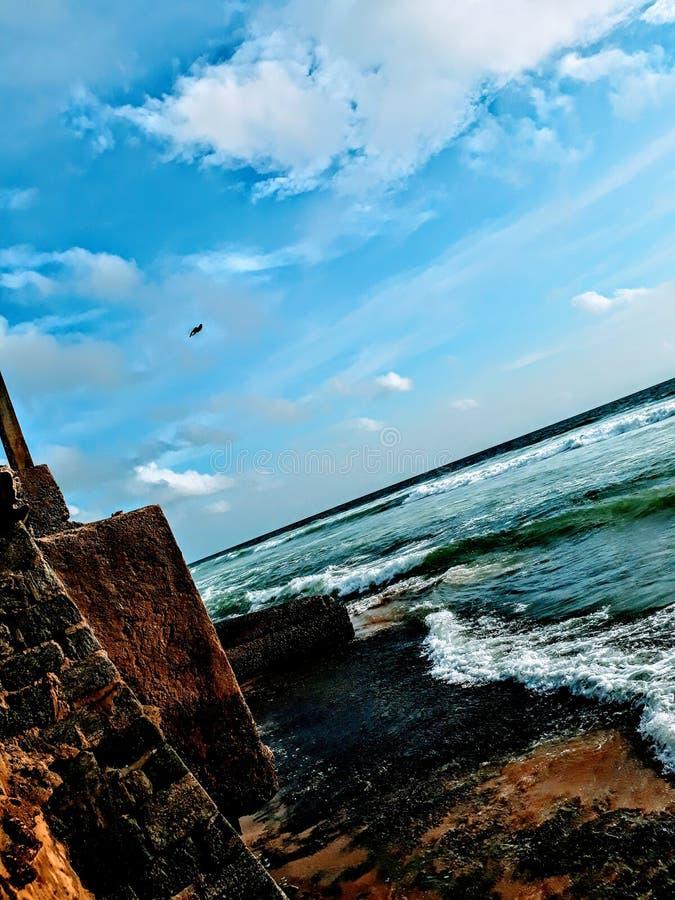 金面孔在斯里兰卡 库存照片