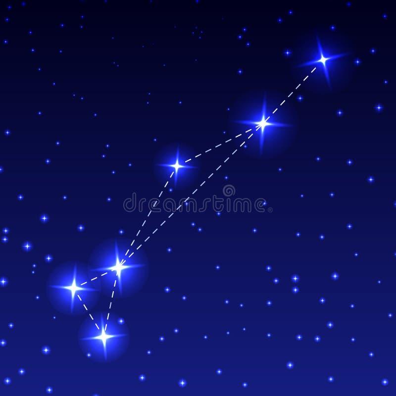 金鱼的星座在夜满天星斗的天空的 天文的概念的传染媒介例证 皇族释放例证