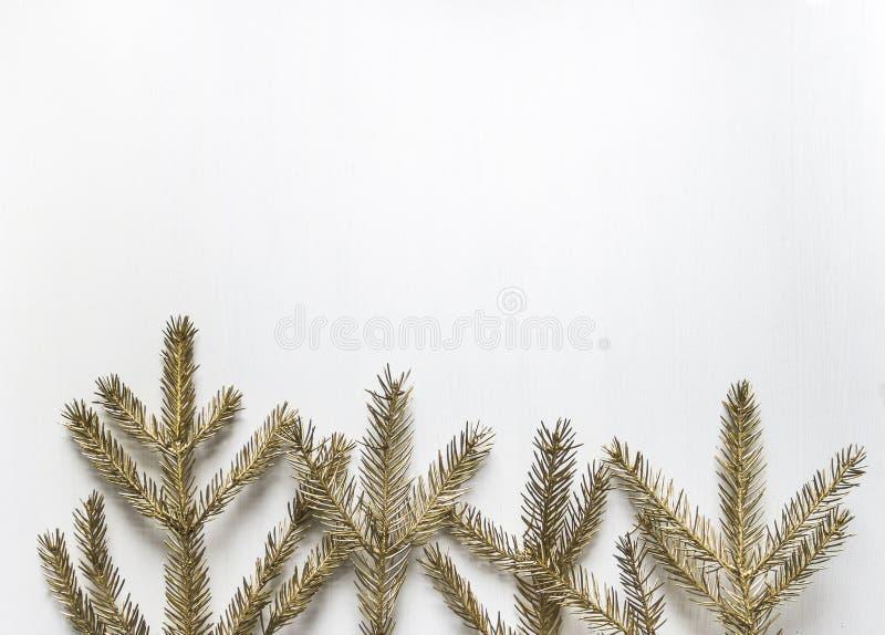 金黄云杉的分支连续说谎象树在底部  免版税图库摄影