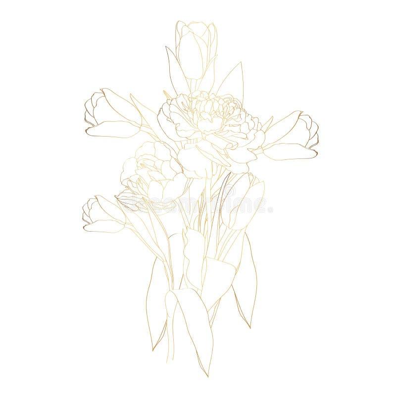 金黄剪影郁金香花束大集合 在白色背景隔绝的手画花 向量例证