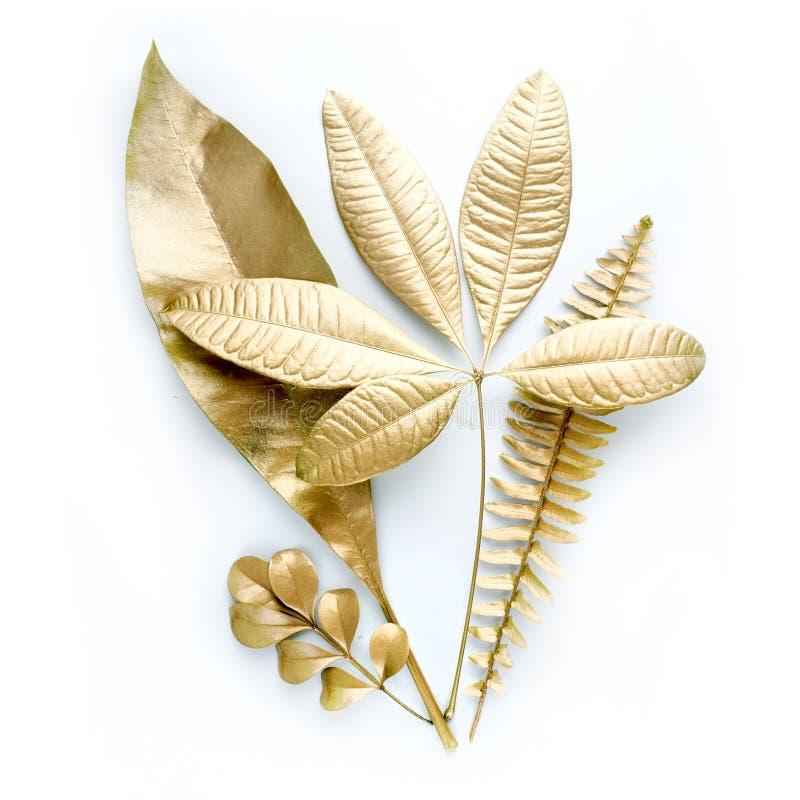 金黄叶子设计元素 邀请的装饰元素,喜帖,情人节,贺卡 查出在白色 库存图片