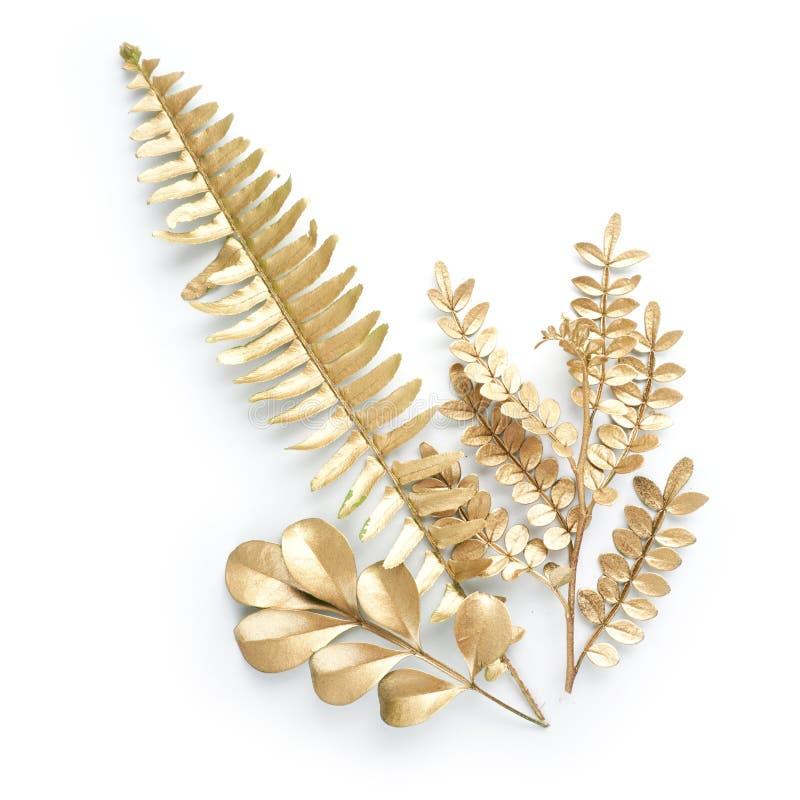 金黄叶子设计元素 邀请的装饰元素,喜帖,情人节,贺卡 查出在白色 免版税库存照片