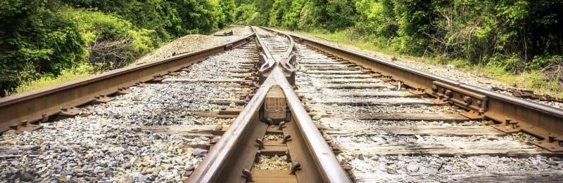 金黄棕色分流的铁轨 免版税库存照片