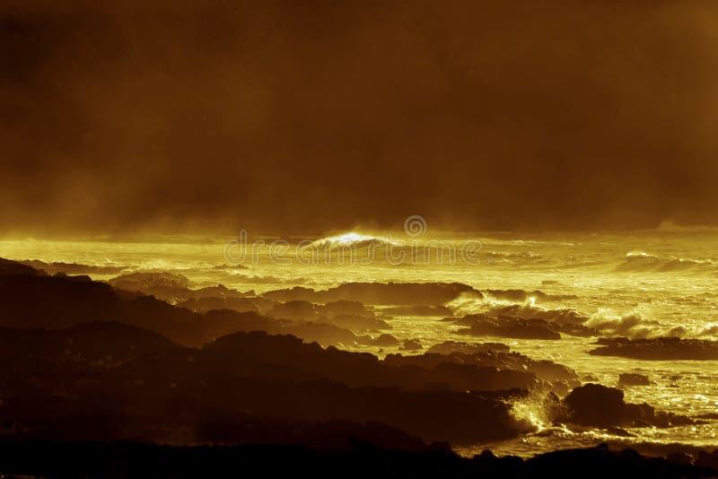 金黄海岸在复活节岛 免版税库存照片