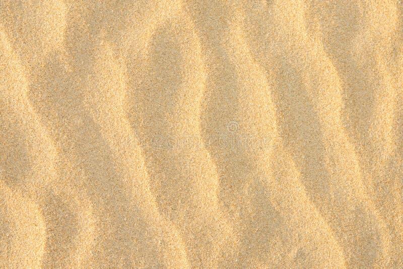 金黄海滨罚款沙子背景 波纹波浪纹理淡色太阳火光 空的拷贝空间 热带假期放松 免版税库存图片