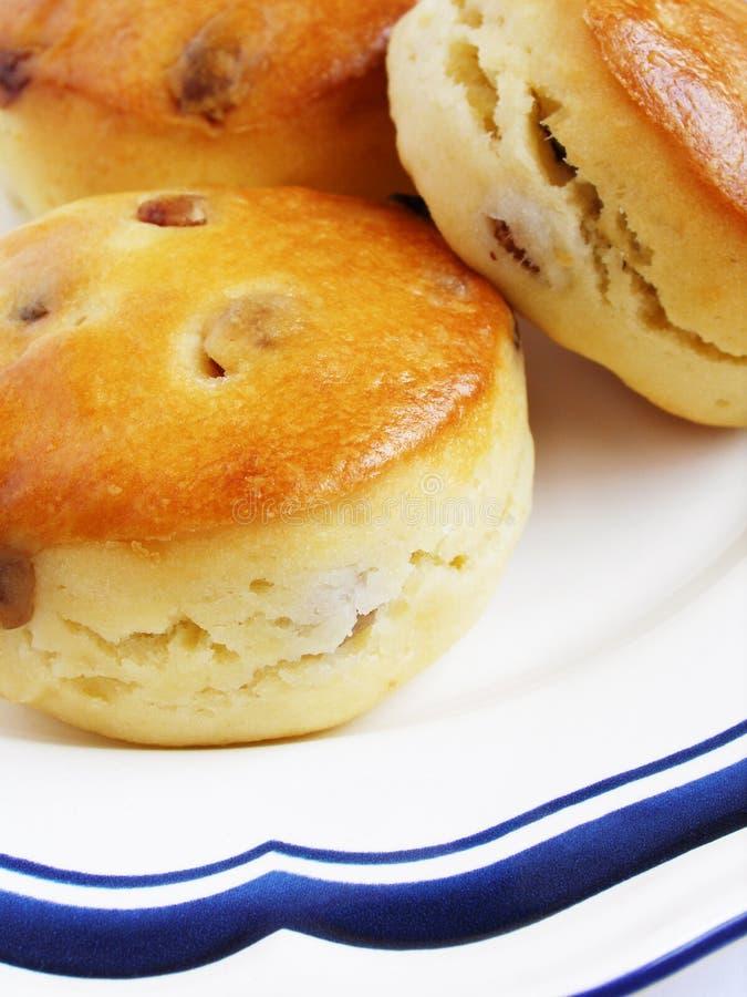 金黄烤饼sultana 图库摄影