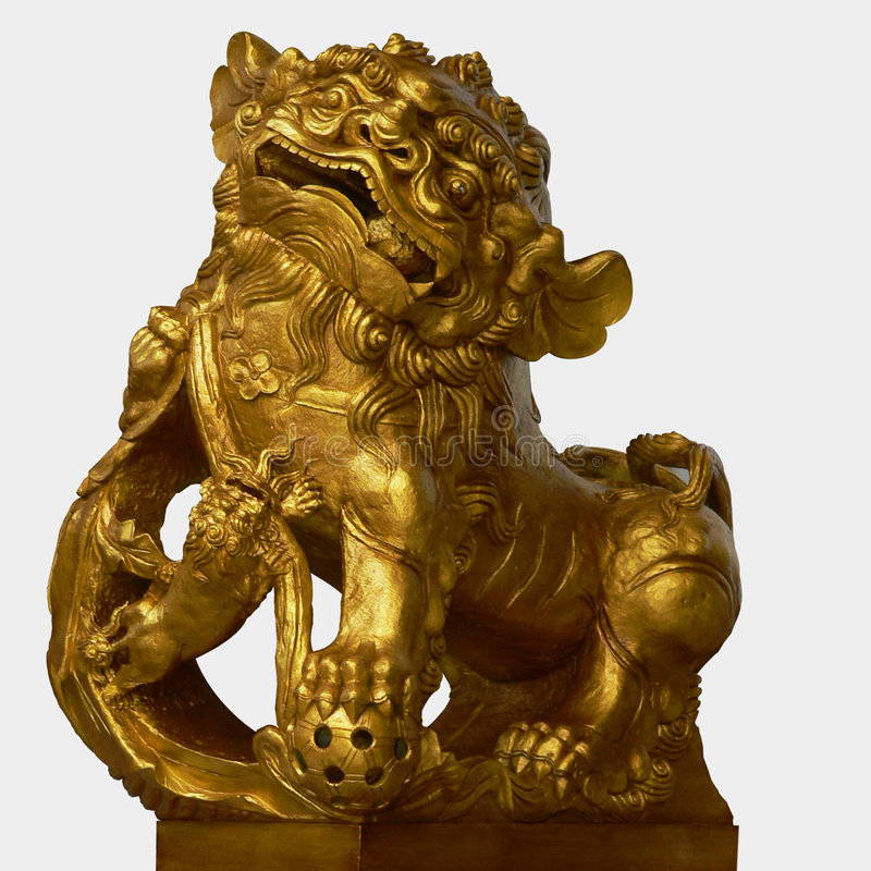 金黄狮子 免版税库存照片