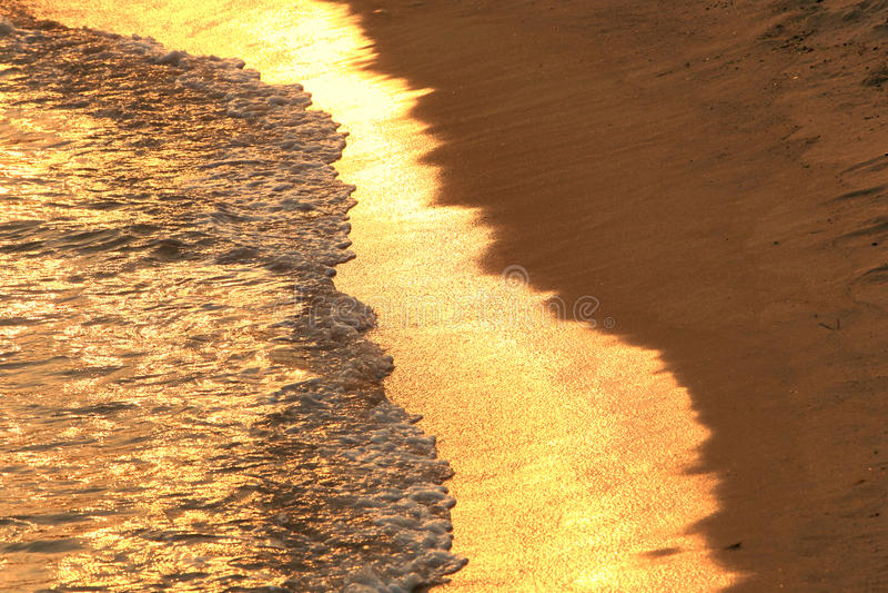 金黄的海滩 免版税库存图片