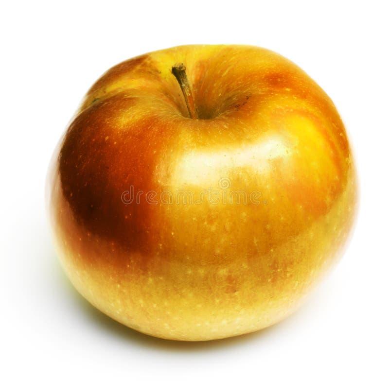 金黄的苹果 库存图片