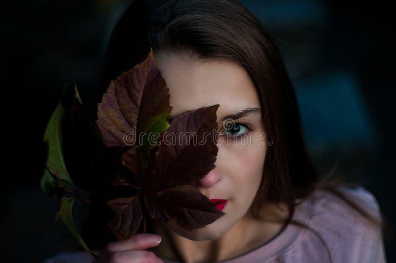 金黄秋天 有叶子的美丽的年轻美丽的女孩在票据 有吸引力的查找 免版税图库摄影