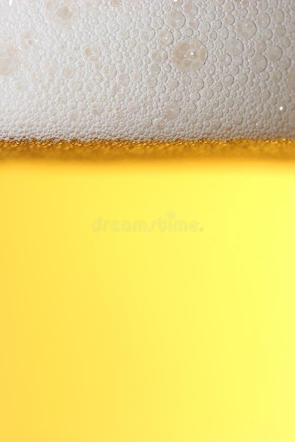 金黄背景的啤酒 图库摄影
