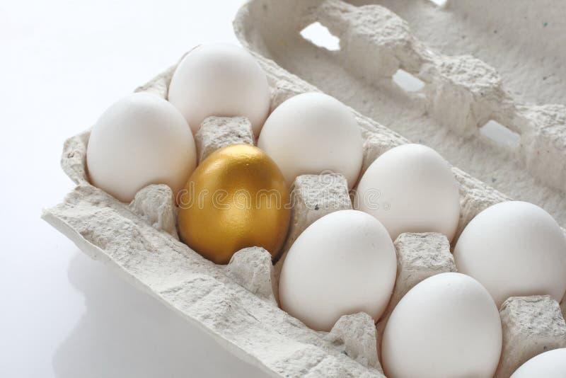 金黄鸡的鸡蛋 库存照片