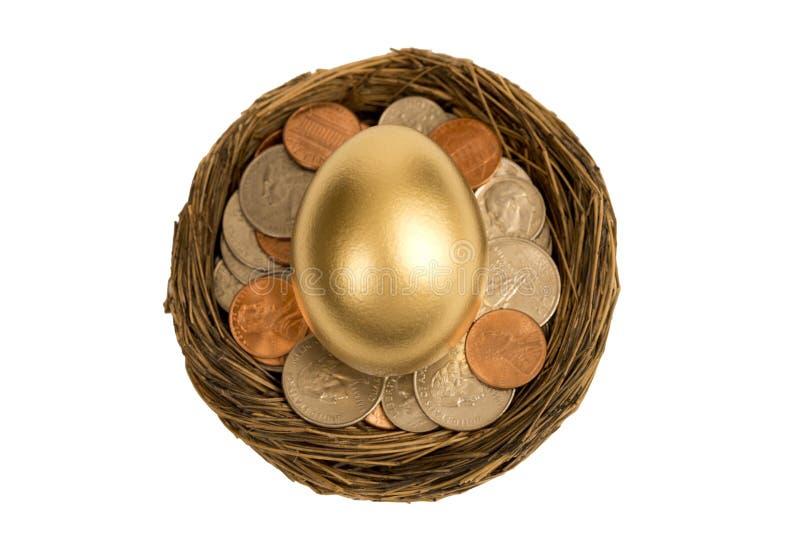 金黄鸡蛋顶上的射击在嵌套的 免版税库存图片
