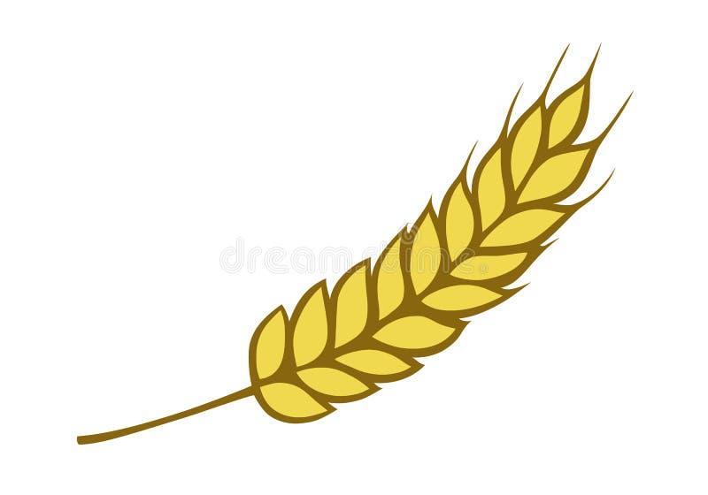金黄麦子 库存例证