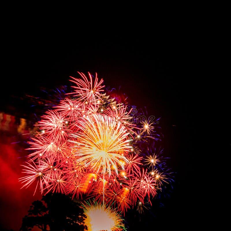 金黄和红色大burstSpectacular烟花 库存图片