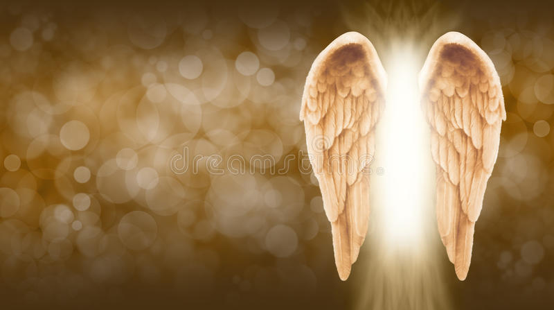 金黄天使在金黄棕色Bokeh横幅飞过 库存例证