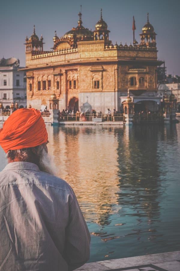 金黄寺庙的香客在印度 库存图片