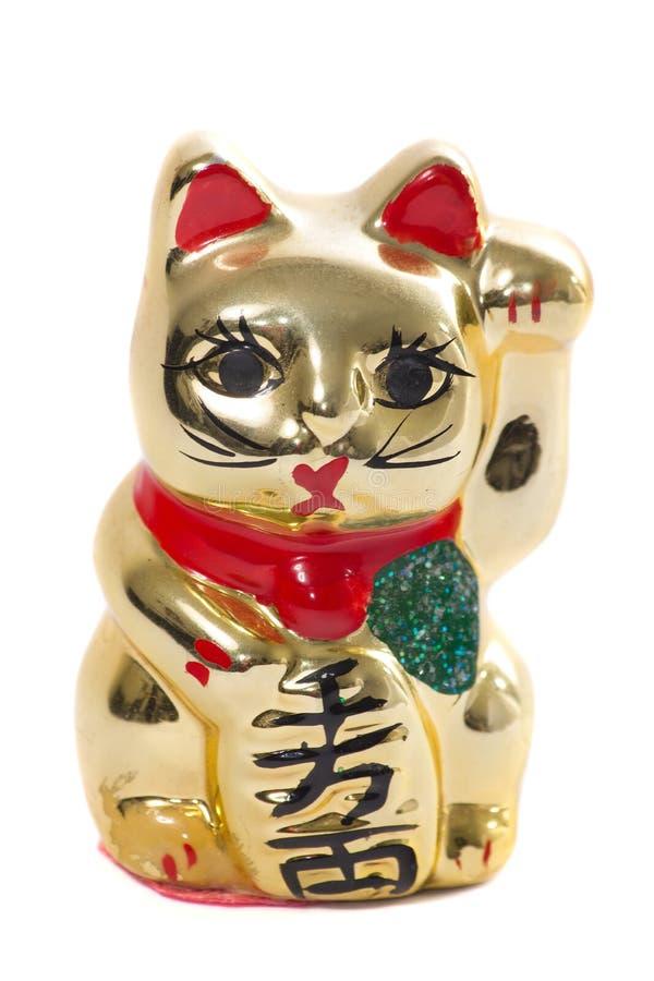金黄日本猫陶瓷在白色背景 库存照片