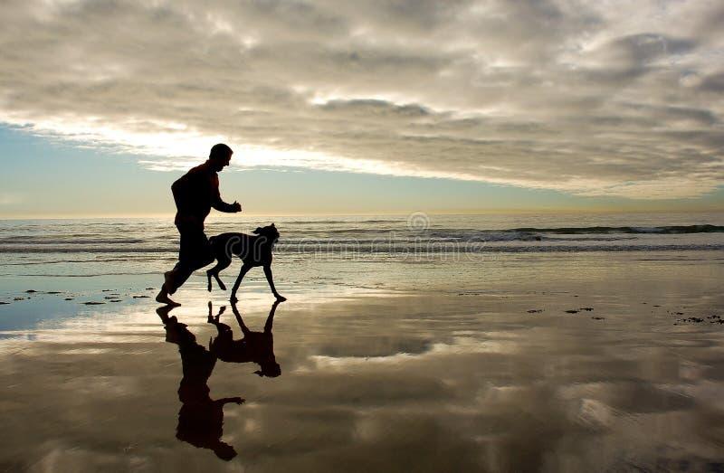 金黄早晨海滩海岸线奔跑 库存图片