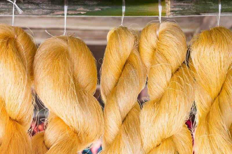 金黄未加工的丝绸 库存照片