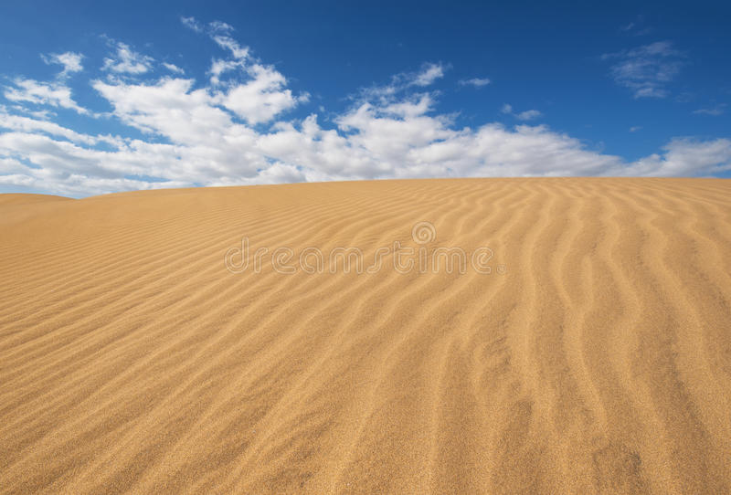金黄沙丘在Maspalomas,大加那利岛,加那利群岛,西班牙 库存图片