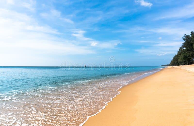金黄黄沙在一个离开的海滩 免版税库存照片