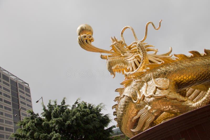 金黄的龙 免版税图库摄影