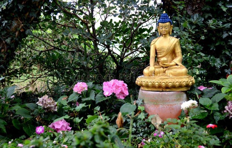 金黄菩萨在庭院里 免版税库存图片