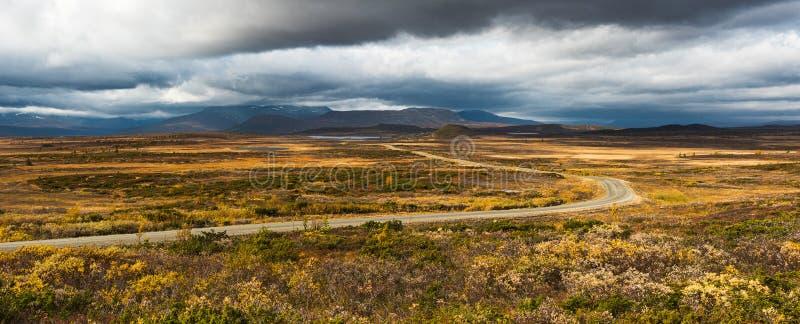 金黄被设色的风景 免版税库存照片