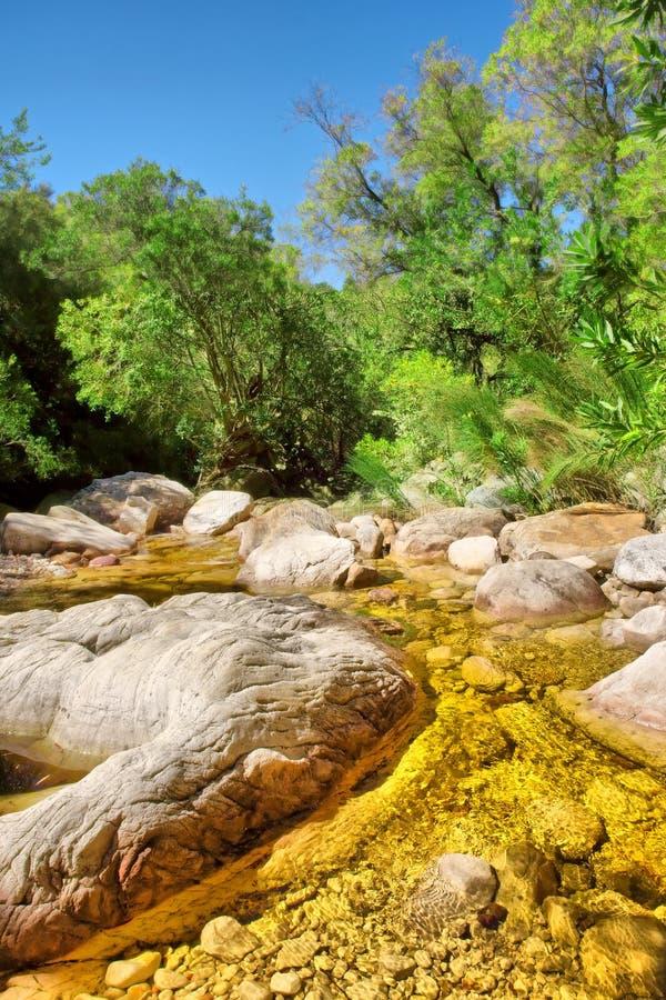 金黄颜色山河 库存照片