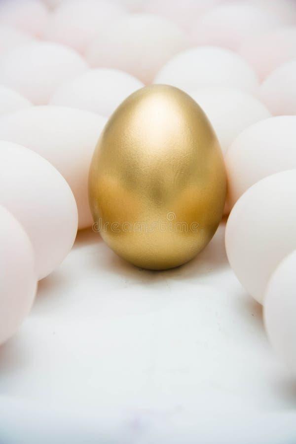 金黄鸡蛋 库存图片