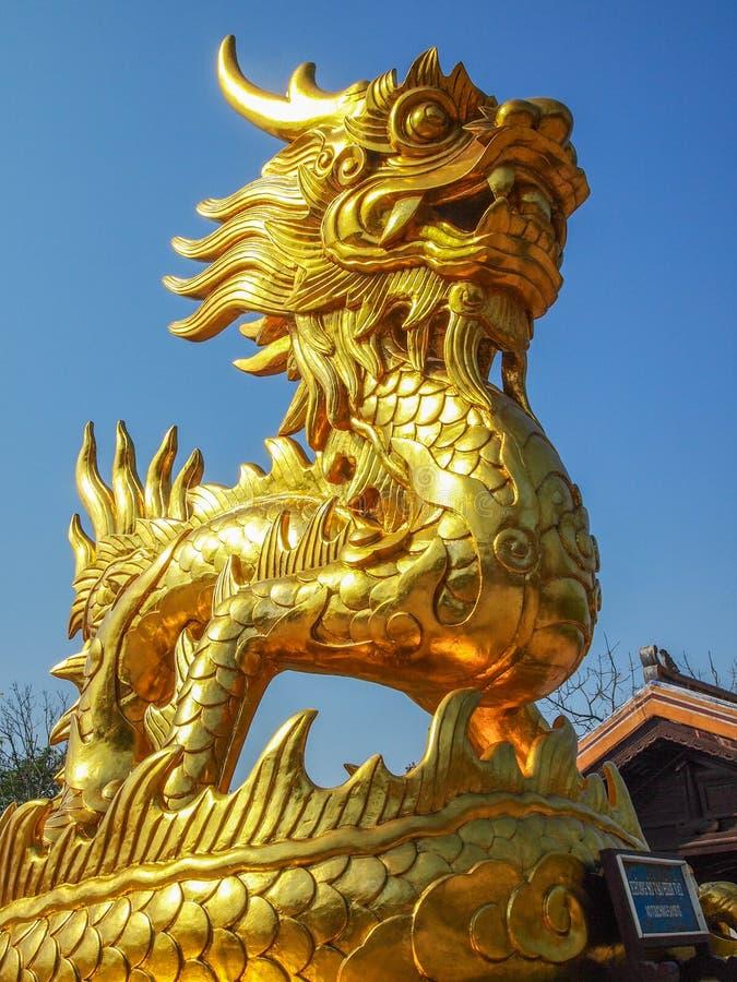 金黄龙雕象 库存图片