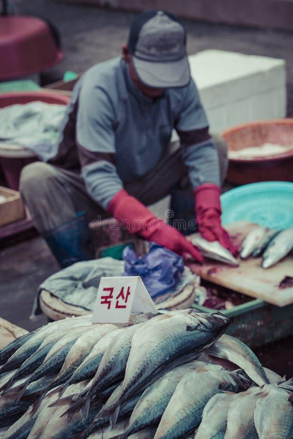 釜山- 2016年10月27日:鲜鱼和海鲜在Jagalchi Fis 图库摄影