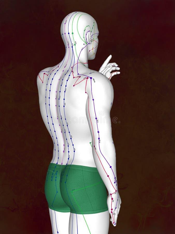 针灸式样M-POSE EHP-02-4, 3D例证 向量例证