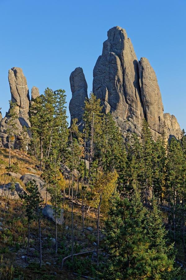 针,岩石在Custer国家公园 免版税图库摄影