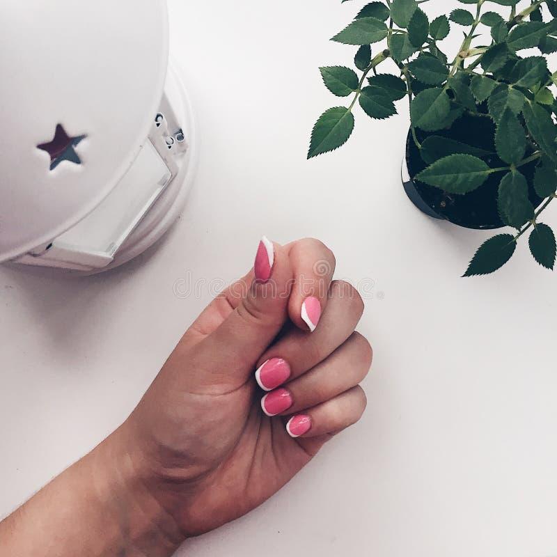 钉子粉红色 修指甲 柔和桃红色 免版税库存图片