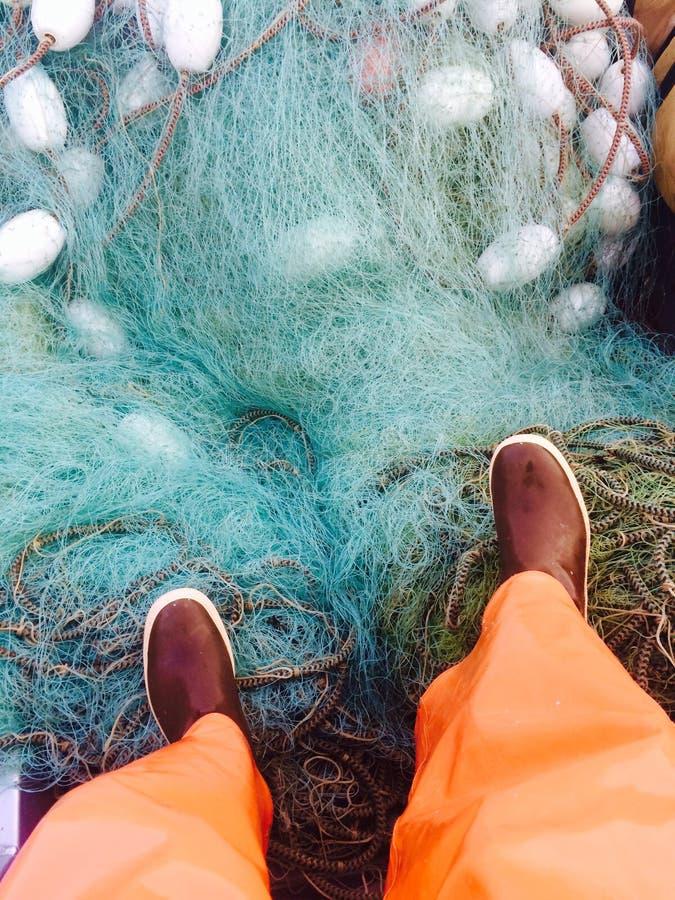 钓鱼在布里斯托尔海湾 库存图片