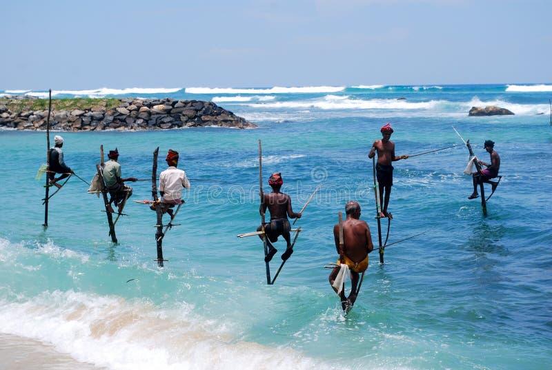 钓鱼在斯里南卡 库存图片